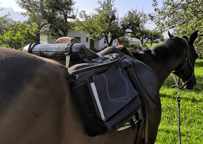 A cheval…